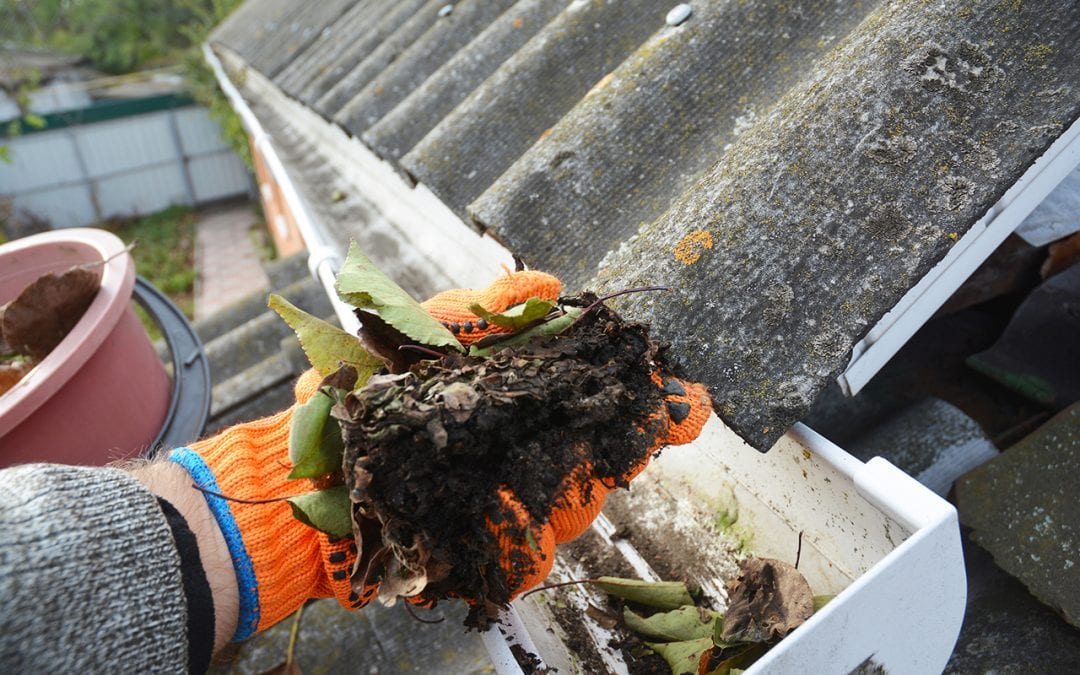 Cleaning Out Your Gutters In 5 Steps