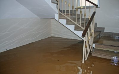 12 Steps for Dealing With Residential Water Damage
